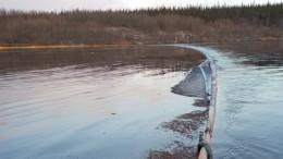Насевере Коми нефть «утекла» вреку— видео