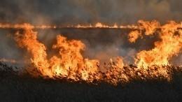 Степные пожары вОмской области вплотную подошли кжилым домам