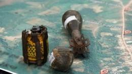 Найденную вБаренцевом море торпеду времен ВОВ уничтожили противотанковой миной
