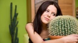 Выбросите кактус: что нужно делать одиноким девушкам, чтобы скорее выйти замуж