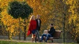 «Бабья осень»: октябрь 2020 может стать самым теплым вистории метеонаблюдений