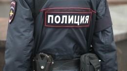 Видео: подполковника полиции отправили внокаут устанции московского метро