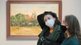 Как будет устроена работа музеев итеатров вРоссии впериод пандемии?