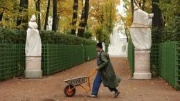 Как мраморные статуи вЛетнем саду Петербурга подготовили кзиме— видеорепортаж