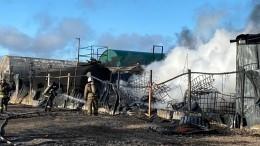 Языки пламени иклубы едкого дыма: лакокрасочный завод сгорел вЛенобласти