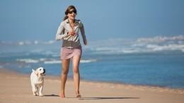 МЧС запретило россиянам выгуливать животных напляжах
