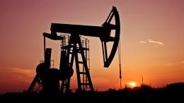 Цены нанефть резко упали после теракта вНицце