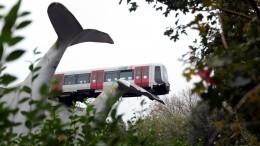 Скульптура «Хвосты китов» вНидерландах спасла поезд отпадения— видео