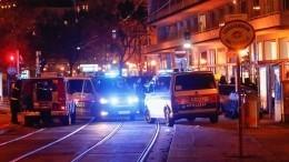 Задержан один изнападавших вцентре Вены