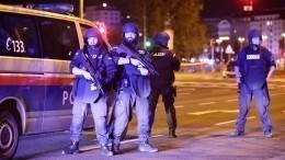 СМИ сообщают оновых атаках террористов вВене