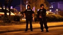 Полиция задержала четверых террористов вцентре Вены