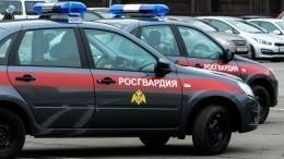 ВРосгвардии прокомментировали работу взрывотехников напарковке вПетербурге