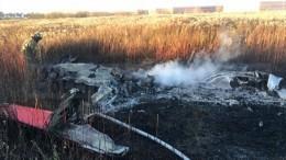 Сгорел дотла: эксклюзивные кадры сместа крушения самолета вПодмосковье