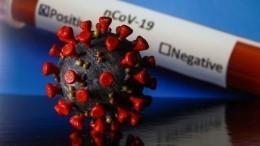 Названы главные ошибки медиков ипациентов при тестировании наCOVID-19