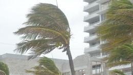 ВоФлориде введен режим ЧСиз-за надвигающегося урагана «Эта»