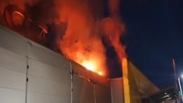 Сильнейший пожар врязанском ТЦначался сбатутного центра— видео