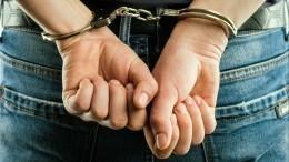 Подозреваемый вгосизмене представитель «Аэрофлота» обжалует арест
