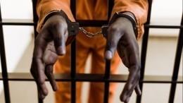 «Это фильм ужасов»: Мария Бутина обамериканских тюрьмах впериод пандемии