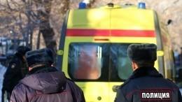 Мать ипятеро детей сгорели вчастном доме под Красноярском