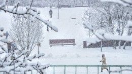 Снежная Россия: наюге страны метели идут уже вторые сутки