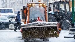 Снегопад вПетербурге чистили 600 единиц техники