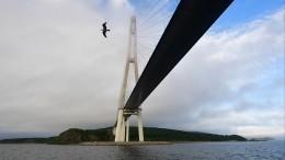 Оболочка ванты Русского моста повисла над морем воВладивостоке