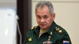 Министр обороны России Сергей Шойгу прибыл вЕреван