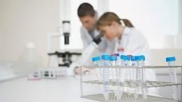 ВВОЗ озвучили теорию нескольких «нулевых пациентов» скоронавирусом