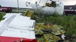 Суд отклонил все запросы нарасследование иных версий крушения Boeing рейса MH17