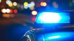Гибель троих сотрудников полиции вДТП под Владимиром попала навидео
