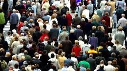 Сектантские сети: почему продолжают свою деятельность вРоссии «Свидетели Иеговы»