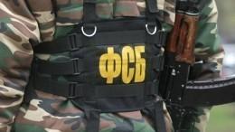 ФСБ сообщила озадержании вЧечне участников банды Басаева иХаттаба— видео