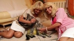 Сестры Зайцевы остались без любимого кота из-за ошибки элитной ветклиники