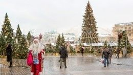 Елки замиллионы: жители регионов просят чиновников снизить новогодние траты
