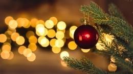 Google запустил серию дудлов вчесть декабрьских праздников
