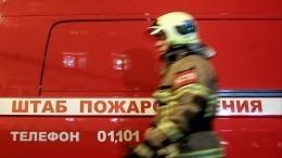 Эксклюзивное видео сместа пожара вПетербурге, где заживо сгорел мужчина