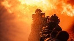 Синдром Плюшкина? Петербуржец погиб впожаре взаваленной мусором квартире