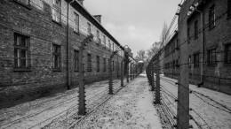 Минюст планирует убрать изроссийских городов все колонии иСИЗО