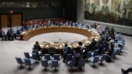ВСовфеде оценили бойкот встречи Совбеза ООН состороны США иихсоюзников