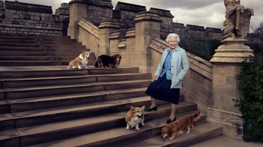 «Потеря ееочень огорчила»: Елизавета II страдает из-за смерти последнего корги