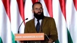 Почему извсех евродепутатов, застуканных нагей-вечеринке, опозорили только представителя Венгрии?
