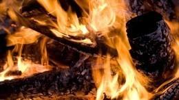 Пара изДзержинска заживо сожгла собутыльницу из-за ревности
