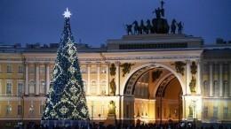 Шеститонная красавица: вПетербург ночью прибудет главная новогодняя елка города