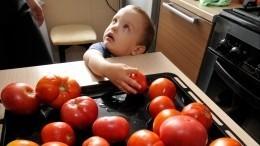 Плодожорка имоль оставили россиян без азербайджанских томатов
