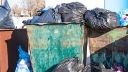 Тело зарезанного юноши нашли вмусорном контейнере вЛенобласти