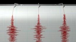 ВЧечне произошло землетрясение магнитудой 5,6— видео