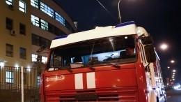 Три человека погибли врезультате пожара вПетербурге— видео