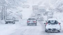 Предновогоднюю Москву завалило снегом