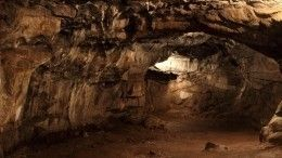 Список членов туристической группы, пропавшей впещерах под Москвой