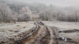Климатологи опасаются страшных последствий бесснежной зимы